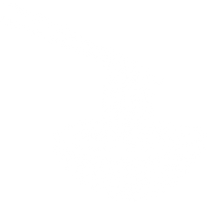 the-pho-bowl.png