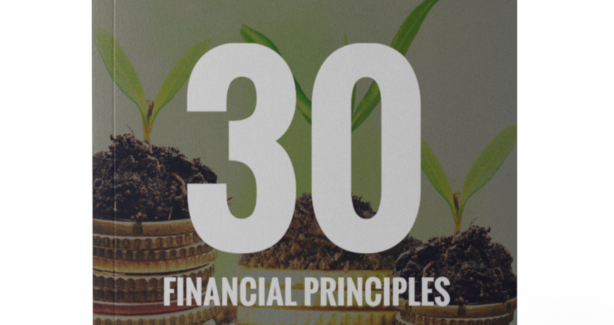 Money Seeds: 30 Financial Principles (Paperback)