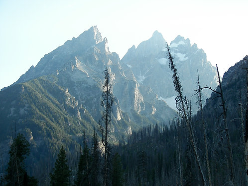 21. 8x8: The Grand Teton Peaks: Jackson Hole, WY