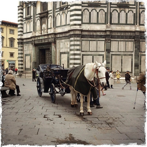 6. 38x38: Waiting: Florence, Italy
