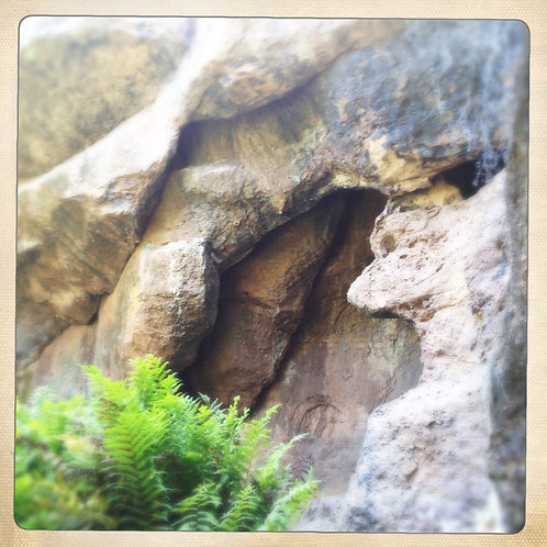 15. 38x38: Entrance to the Bat Caves:Pinnacles, CA