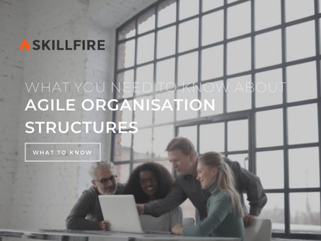 What You Need to Know About Agile Organisation Structures