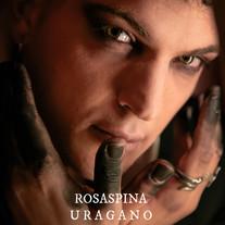 Rosaspina / Uragano