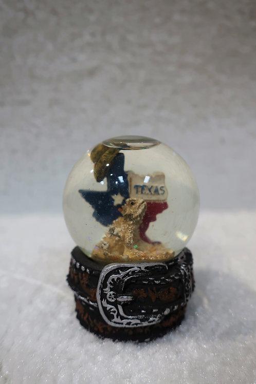 Texas Water Ball