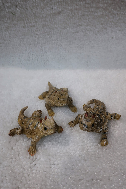 Horny Toad Set