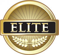 Petaluma Elite Business Badge