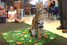 Cheetah_Preschool_edited_edited.jpg