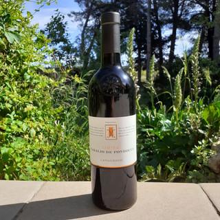 Terroir - Cazalis de Fondouce - Vin rouge