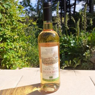 Muscat de Mireval - Vin Doux Naturel