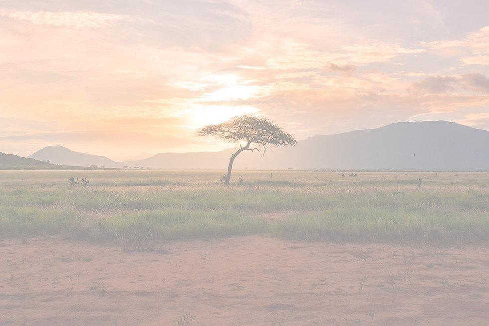 Kenya_Sunset_edited.jpg