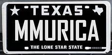 Texas%20plate_edited.jpg