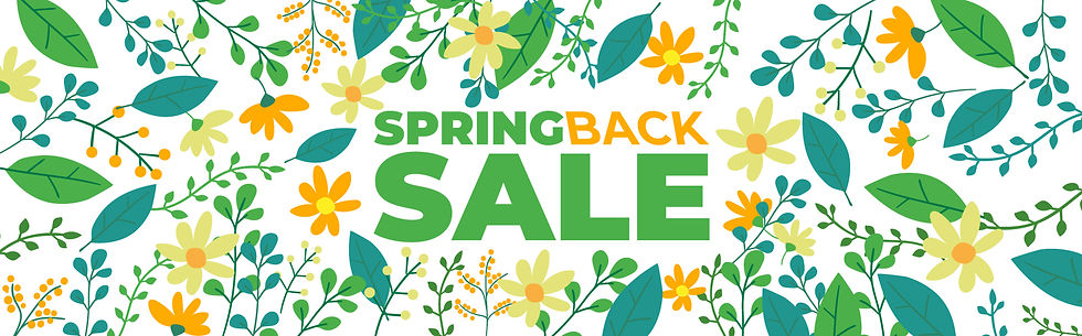 PE-SPRINGBACK-SALE-website.jpg
