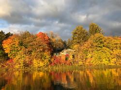 Autumn Bliss!