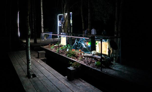 04. plant-opera.jpg