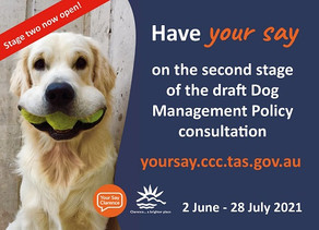 Where will you exercise your dog in Clarence?