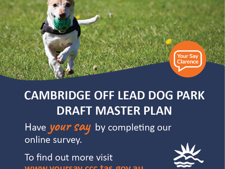 Cambridge Off-Lead Dog Park Masterplan - Have your say