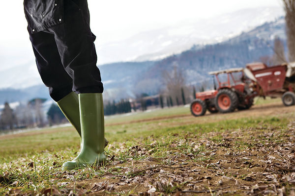 18 AGRICULTURE (DOLOMIT green).jpg
