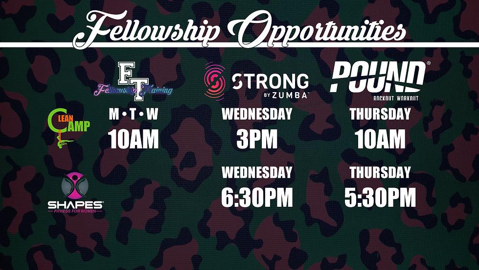 Fellowhship Opportunities.jpg