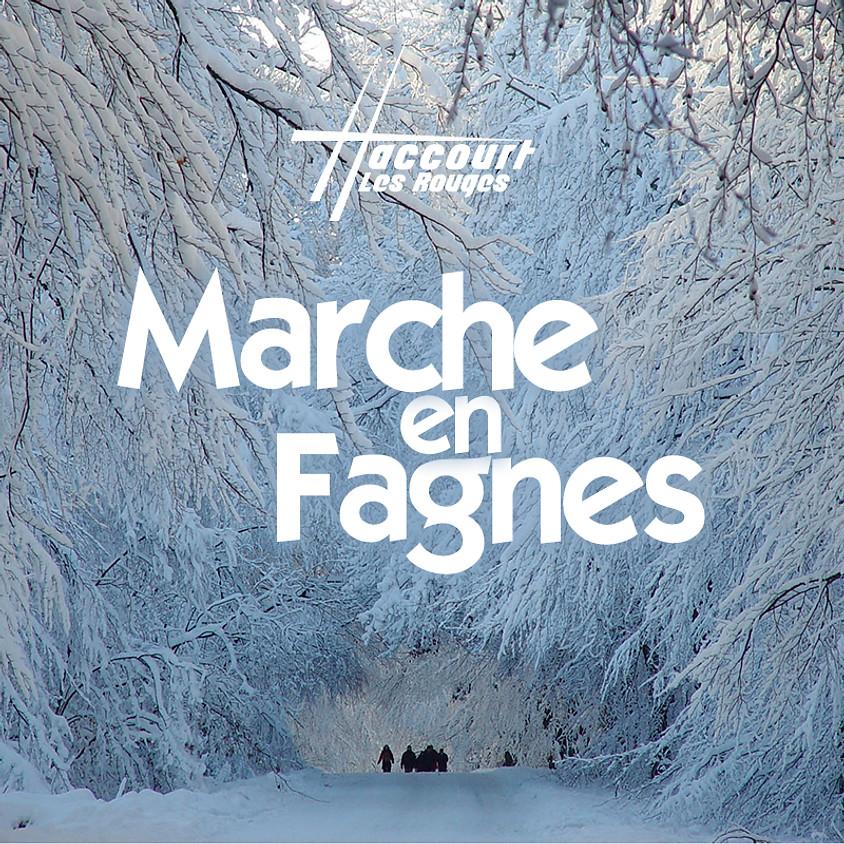 Marche en Fagnes
