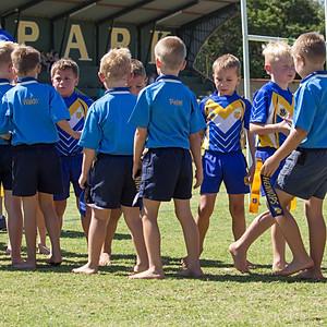 Sport - Bulletjies Rugby / Elarduspark teen Hennopspark