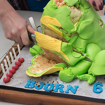 Birthday - Biorn