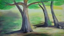 _drzewa.jpg