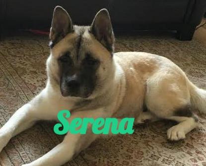 Serena-8_edited.jpg