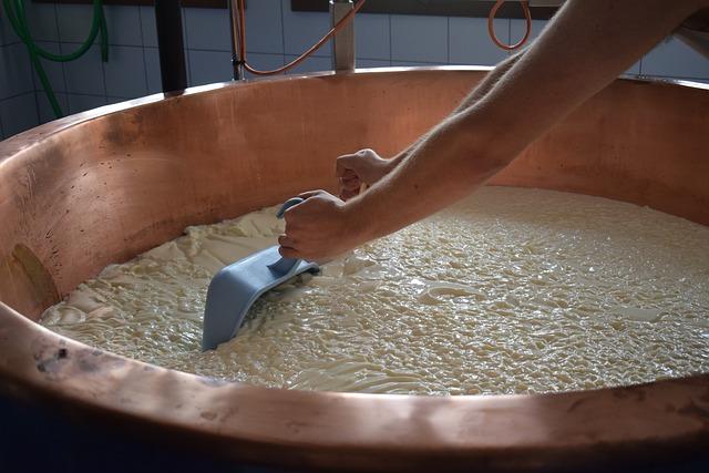 チーズ工房めぐり