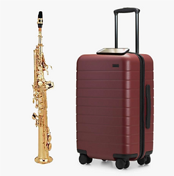 sax suitcase.png