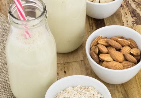 Bottles of homemade plant based milk and