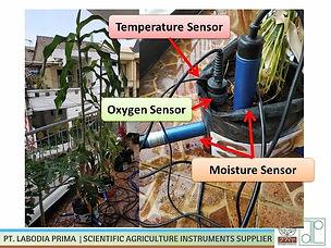 Soil Moisture Case Study.JPG