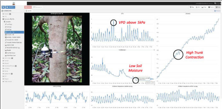crop-monitoring-diagram-2.jpg