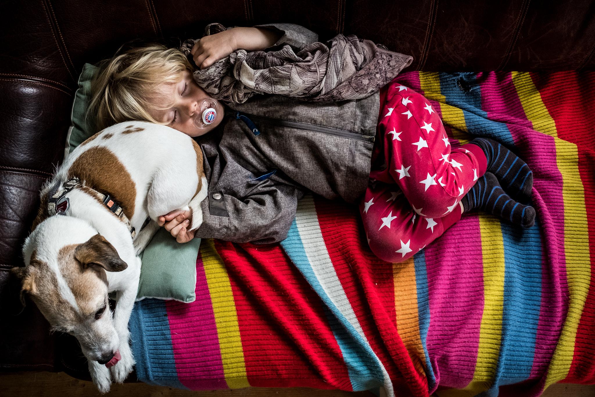 Junge schläft mit Hund