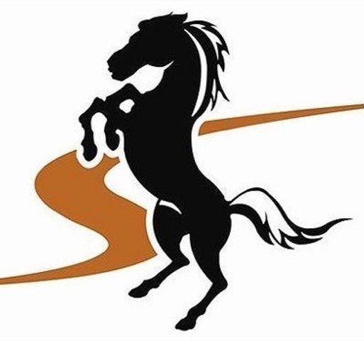 stallions high res.jpg