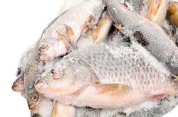 Frozen-fish-is-it-healthy