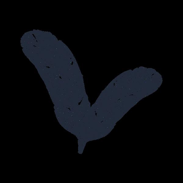 Bianca Rubim Logo transparente.png