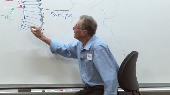 Stanford Toolkit - 4