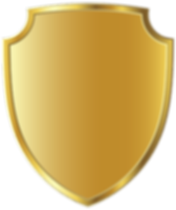gold-badge-png-2.png