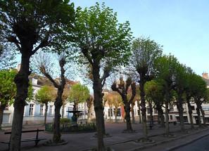 Montreuil-sur-Mer-La-Place-Darnetal
