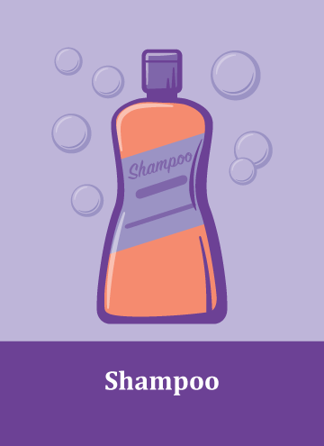 Holiday_Fever-Gift-Shampoo.png