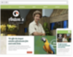 custom Business website design