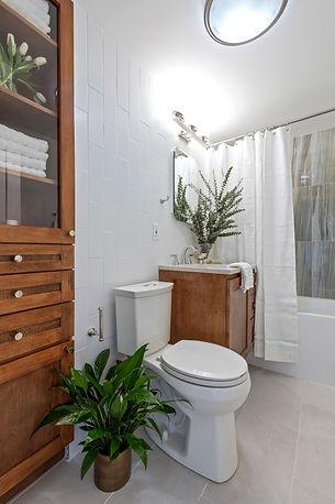 Nature Inspired Bath Remodel