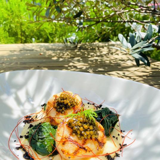 Capensante-grilled-hokkaido-scallopes-ga