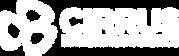 cirrus-logo copy.png