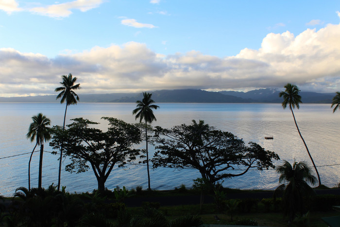 Savusavu: between the forest and the sea