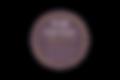 Spark Essentials logo 2020 (1).png