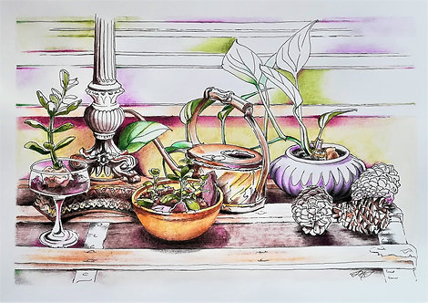 Still Life with Succulents and Watering Can