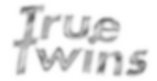 logo chrome 2019.png