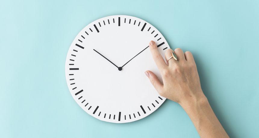 Quante ore lavora un SMM?