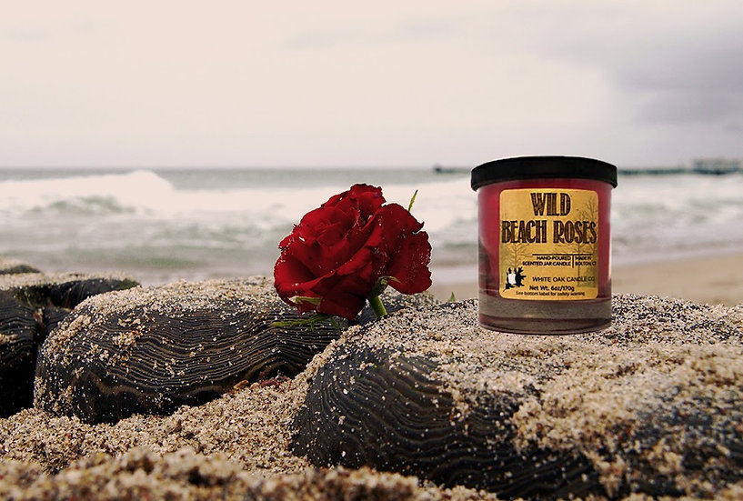 Wild Beach Rose